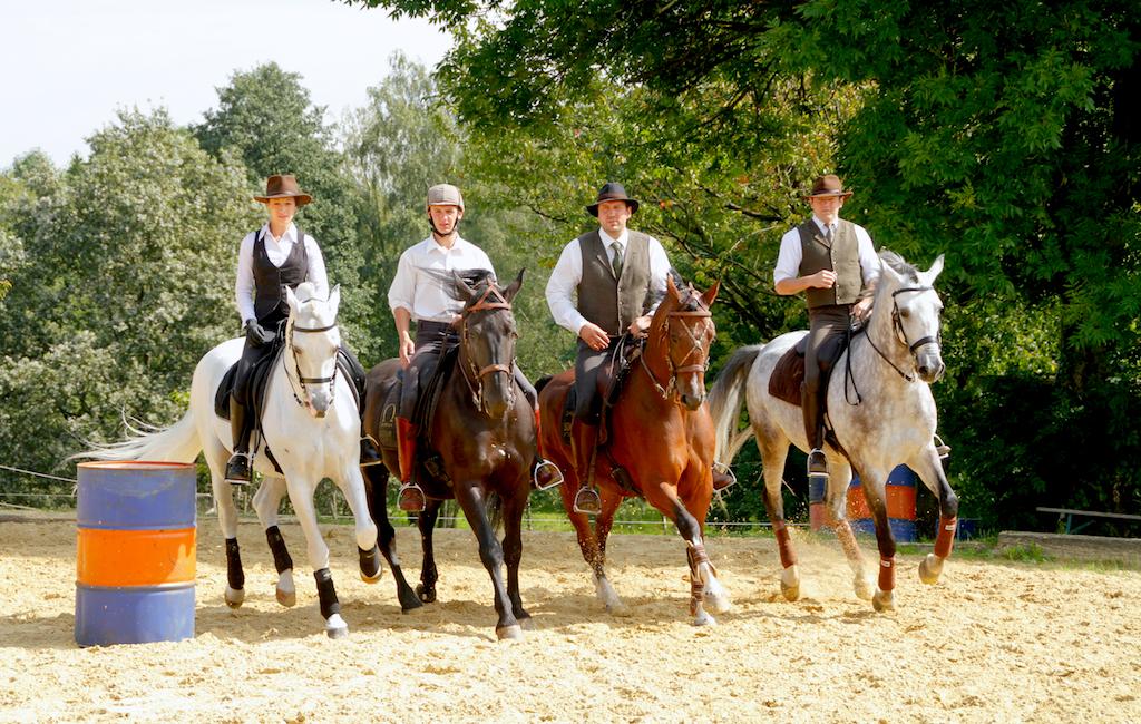 Working Equitation - Foto: Sven Cramer - www.pferdefotos.biz